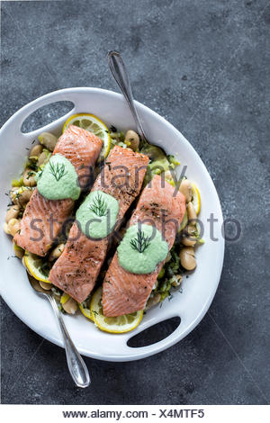 A plate white butter beans topped with oven baked salmon slices are photographed from the top. - Stock Photo