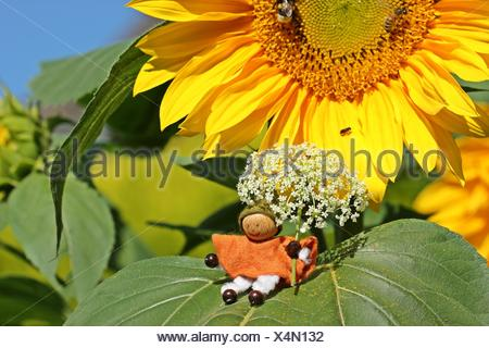 small gnome with flower umbrella sitting on sunflower leaf - Stock Photo