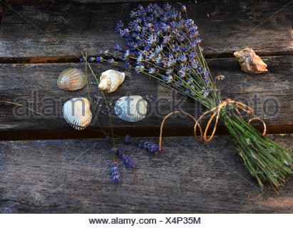 Bunch of lavender and seashells on wooden planks - Stock Photo