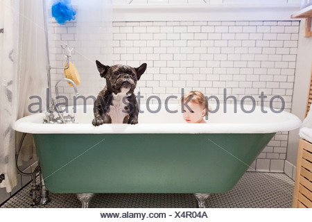 Girl sitting with bulldog in bathtub - Stock Photo