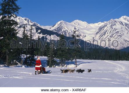 Santa Claus Mushing Dogs Chugach Mtns Southcentral AK Winter Snow - Stock Photo