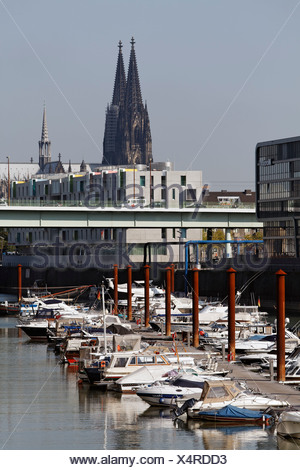 Marina with a view of the Cologne Cathedral, Rheinauhafen district, Cologne, North Rhine-Westphalia, Germany, Europe - Stock Photo
