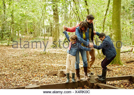 Beech woods in Autumn. A family of four holding hands and walking along wooden beams above the ground.