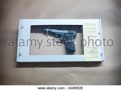 Gun in forensic biohazard box - Stock Photo