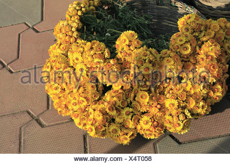 Basket full of small yellow flowers, in the market near, Government Botanical gareden, Udhagamandalam (Ooty), Tamil Nadu,India - Stock Photo