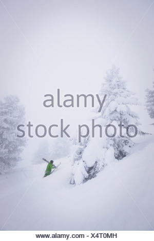 Male free skier ascending in deep snow, Mayrhofen, Ziller Valley, Tyrol, Austria - Stock Photo