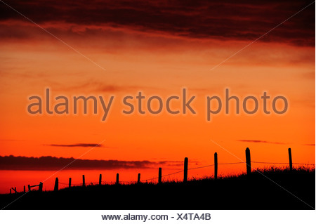 Barbed wire fence running through the prairie at sunrise, Saskatchewan Province, Canada - Stock Photo