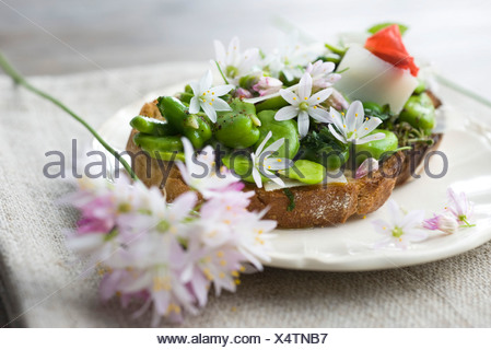 Broad bean and herb tartines with wildflowers - Stock Photo