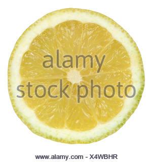 Durchgeschnittene Zitrone, isoliert vor einem weissen Hintergrund - Stock Photo