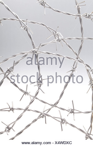 Close-up of barbed wire against white background - Stock Photo