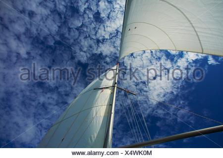 Sailing boat on baltic sea - Stock Photo