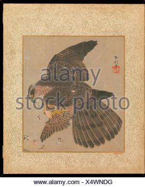 o鷹書画冊/Album of Hawks and Calligraphy. Artist: Kano Tsunenobu (Japanese, 1636-1713); Period: Edo period (1615-1868); Date: 17th-18th century; - Stock Photo