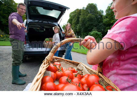 Two generation family loading car with fresh vegetables girl 8 10 carrying basket full of tomatoes smiling side view close up - Stock Photo