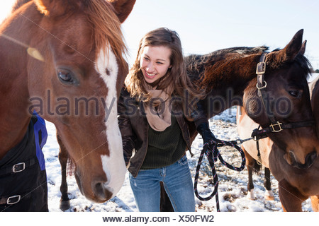 Young woman with horses in winter field - Stock Photo