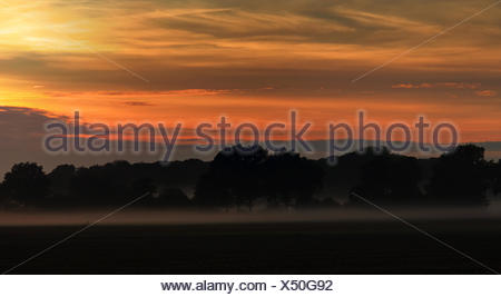 Break of dawn in autumn - Stock Photo