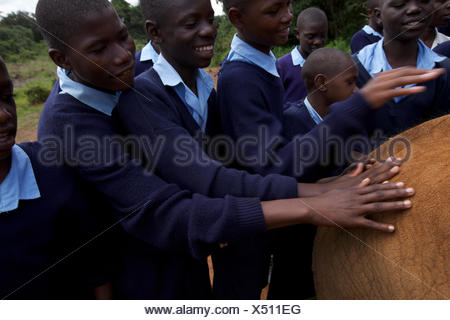 An elephant orphan is touched by visiting schoolchildren. - Stock Photo