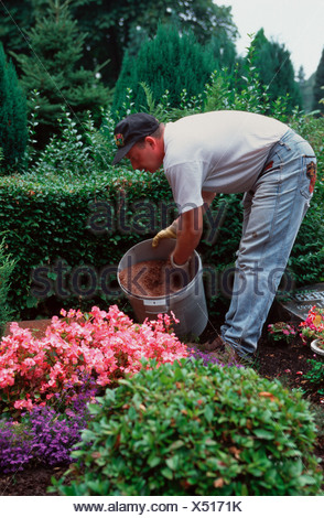 Cemetery, a gardener at the grave care - Stock Photo