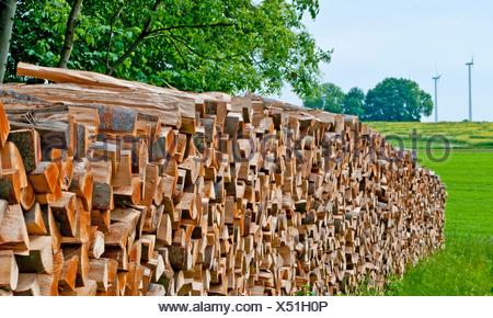 fuel-wood and wind-wheels in Germany - Stock Photo