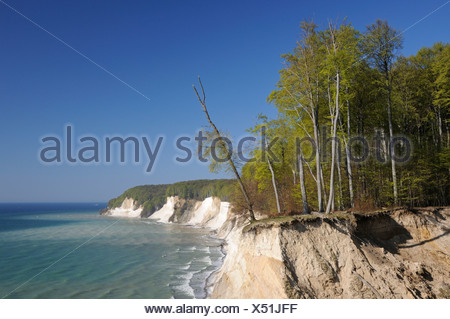 View of the Baltic Sea and the steep coast, Jasmund National Park, Rugia, Ruegen, Mecklenburg-Western Pomerania, Germany, Europe - Stock Photo