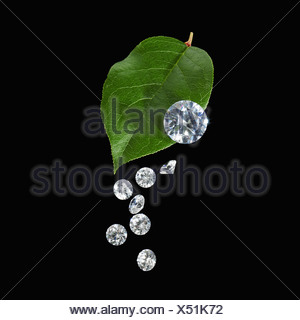 A green leaf with vein markings. A group of small clear glass beads, gem cut with reflective surfaces. - Stock Photo
