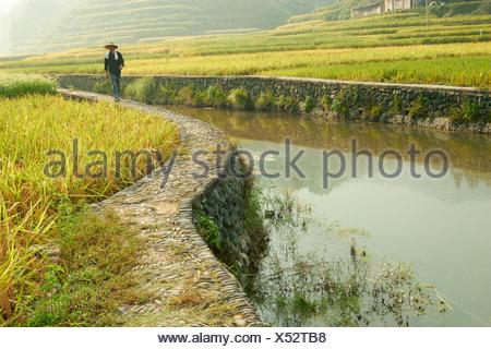 Rice terraces and people, Zhaoxing, Guizhou, China - Stock Photo
