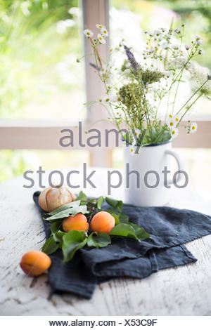 Apricots and onions with grey kitchen towel and flower bouquet on white wooden table with garden view in the background - Stock Photo