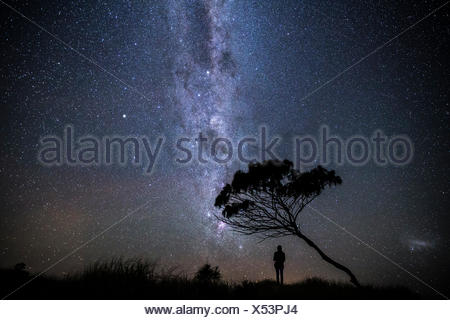 Australia, Yamba, Man standing under stars at night - Stock Photo