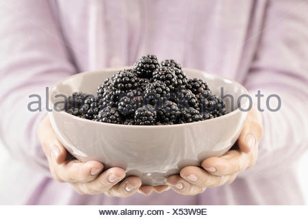 Mid section view of woman holding a bowl of blackberry, Bavaria, Germany - Stock Photo