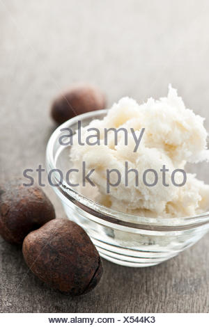 Shea nuts and sheabutter in glass bowl - Stock Photo