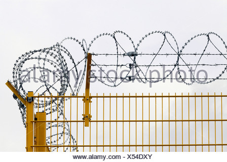 Yellow metal fence with barbed wire (razor wire) - Stock Photo