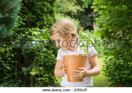 Little girl gardening, holding potted plant in hands - Stock Photo