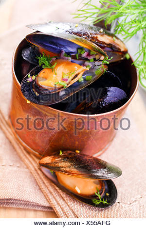 Delicious freshly boiled marine mussels in a copper saucepan with their shells open garnished with dill for a gourmet seafood starter, high angle closeup view - Stock Photo