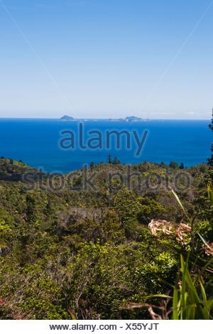 Corremandal Peninsula In Hahei; New Zealand - Stock Photo