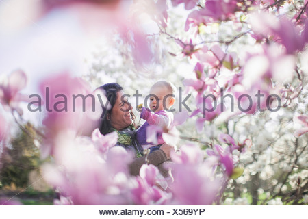 Grandmother and granddaughter amongst magnolia blossom - Stock Photo