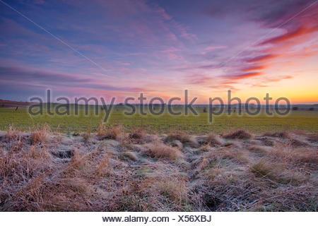 Sonnenaufgang, Frost, Felder, Wolken, Winter, Sachsen-Anhalt, Deutschland - Stock Photo