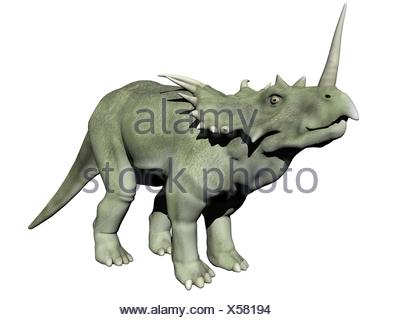 styracosaurus dinosaur - 3d render - Stock Photo
