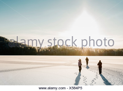 Three people nordic walking through snow covered field - Stock Photo