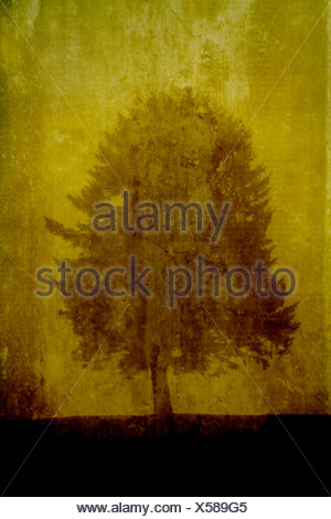 A tree standing on a textured yellow background - Stock Photo