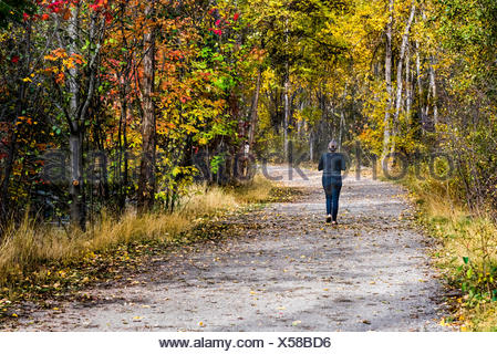 Woman jogging in the park, British Columbia, Canada - Stock Photo