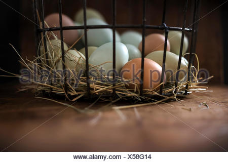 Fresh, multi-colored eggs in metal basket with hay on a rustic wood surface. - Stock Photo