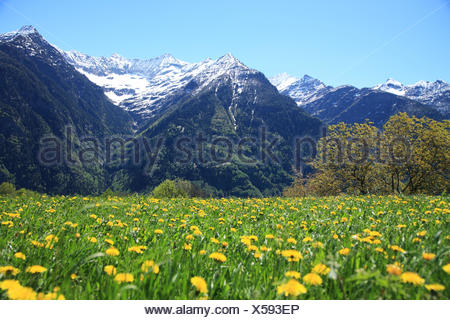 Switzerland, Canton Ticino, Leventina Valley, Sobrio - Stock Photo