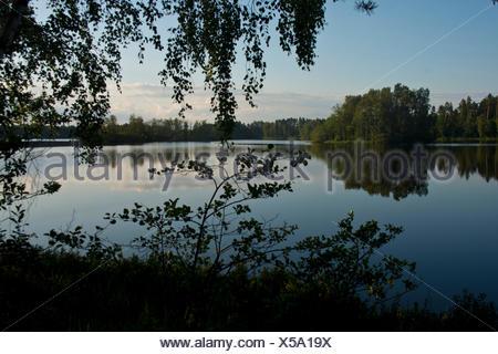 Sweden, Europe, Smaland, Markaryd, Store Sjö, lake, shore, trees, summer, islands, - Stock Photo
