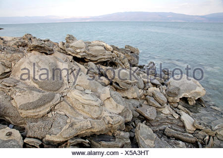 Salt crystals on the shore, Dead Sea, West Bank, Israel, Middle East Stock Photo