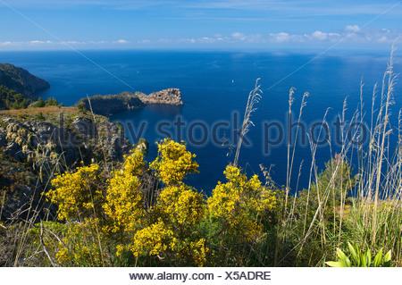 Miramar estate and headland of Sa Foradada, near Valldemossa, Majorca, Balearic Islands, Spain, Europe - Stock Photo