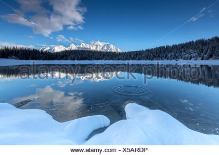 Woods and snowy peaks are reflected in the clear water of Palù Lake Malenco Valley Valtellina Lombardy Italy Europe - Stock Photo