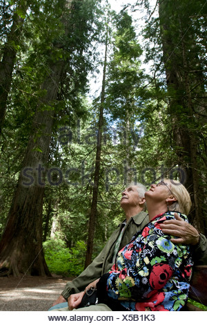 Retired couple sitting under giant trees in Montana. - Stock Photo