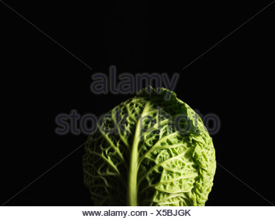 Close up of head of cabbage - Stock Photo