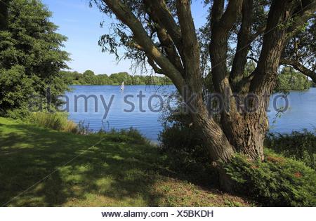 Elfrather lake in Krefeld-Ürdingen, North Rhine-Westphalia, Germany, - Stock Photo