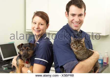 Male Veterinary Surgeon And Nurse Holding Cat And Dog In Surgery - Stock Photo