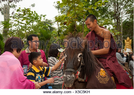 Buddhist monk on horseback collecting alms in the morning, temple and monastery of Wat Phra Archa Thong or Golden Horse Temple - Stock Photo